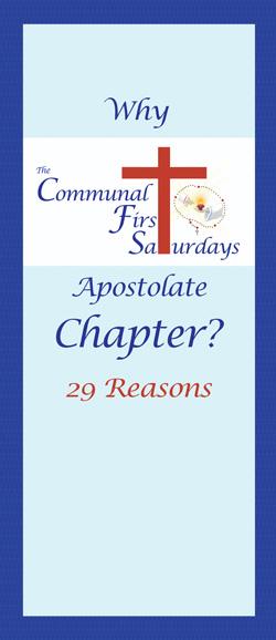 Why_CFSA_Chapter_29_reasons